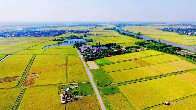 Đất thổ cư là gì, có thể làm sổ đỏ và được phép xây nhà không?