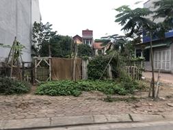 Chị gái vỡ nợ bán gấp 133m đất đấu giá 31ha Trâu Quỳ, Gia Lâm