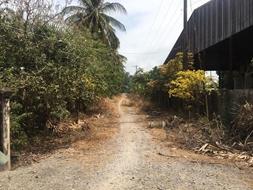 Cc bán lô đất rộng giá rẻ vị trí đẹp xã thổ sơn huyện hòn đất tỉnh kiên giang 300000m²