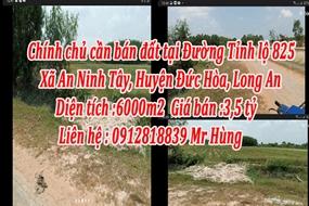 Chính chủ cần bán đất tại Đường Tỉnh lộ 825, Xã An Ninh Tây, Huyện Đức Hòa, Long An