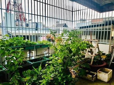 Bán gấp nhà Phường 9, Phú Nhuận, 4 lầu đúc, hẻm xe hơi 5m