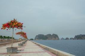 Đất Nền Sổ Đỏ Bao Biển Hạ Long - Cẩm Phả TTP