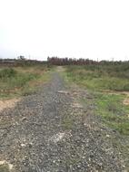 Cần bán gấp 1000m đất ở đường vĩnh lộc.